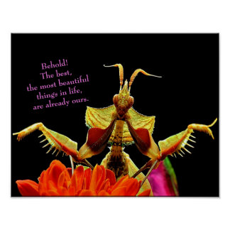 Praying Mantis & Flowers Bright & Beautiful Poster