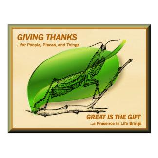 Praying Mantis Giving Thanks Postcard