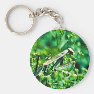 Praying Mantis Keychain