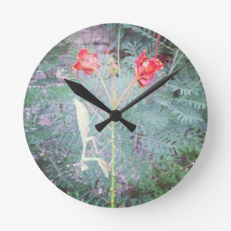 Praying mantis round clock