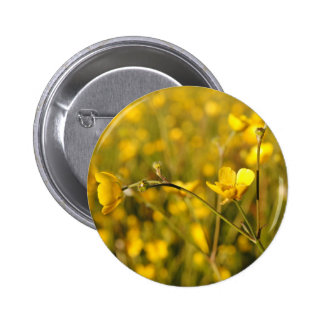 Pré d été jaune badge avec épingle