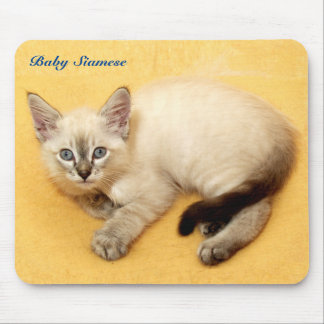 Precious Baby Siamese Cat Resting Mousepad