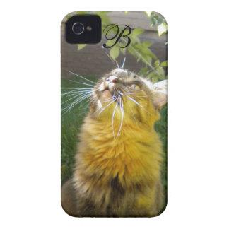 Precious Kitty Monogram iPhone 4 case