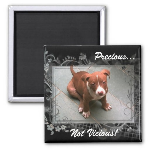 Precious Not Vicious! Magnet