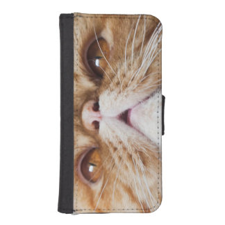 PreCioUs PoSeSSIoNz iPhone SE/5/5s Wallet Case