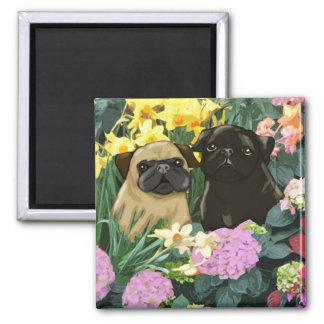 Precious Spring Pugs Magnets