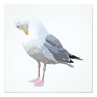 Preening Gull. Card