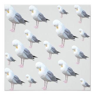 Preening Gull Pattern on Gray. Card