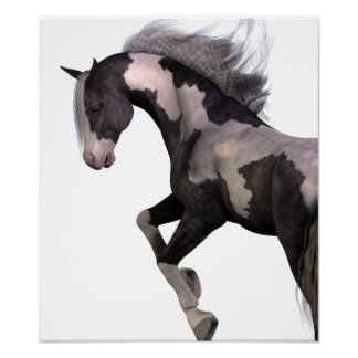 "Premium poster canvas art print ""savage Horse """