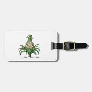Preppy Heraldic Pineapple Coat of Arms Crest Luggage Tag
