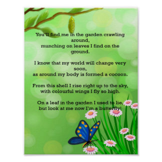 Preschool - What Animal am I poster? A Butterfly Poster
