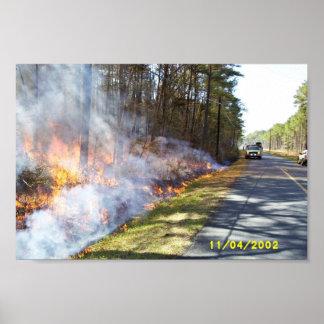 Prescribed Burn at Chesapeake Marshlands National Poster