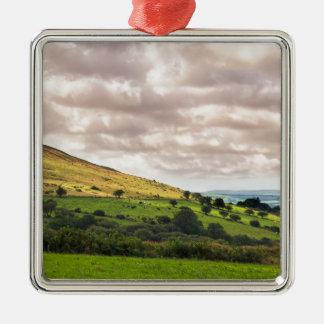 Preseli Hills Metal Ornament