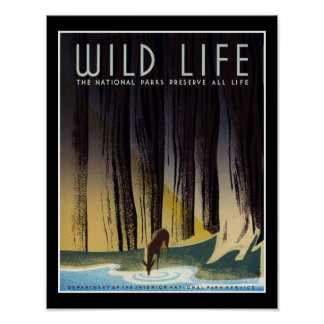 Preserve All Life Poster