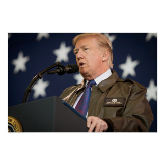 President Donald Trump w/Name Insignia Poster