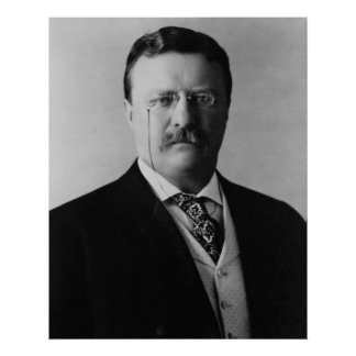 President Theodore Roosevelt Portait Poster