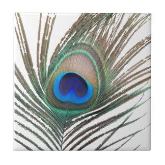 Prestigious Peacock Tile