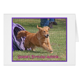 'Pretend' Golden Retriever Agility Birthday Card