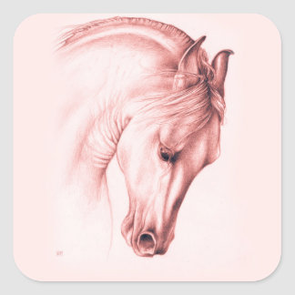 Pretty Andalusian Horse Square Sticker