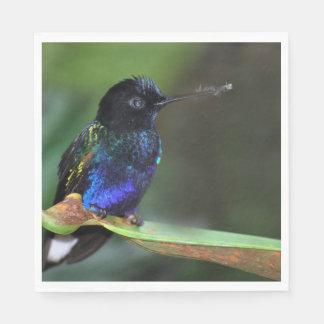 Pretty Black, Blue and Green Hummingbird Disposable Napkins