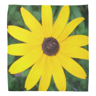 Pretty Black Eyed Susan Bandannas