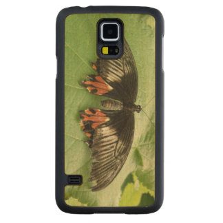 Pretty Black Red and Gold Butterfly Wooden Maple Galaxy S5 Slim Case
