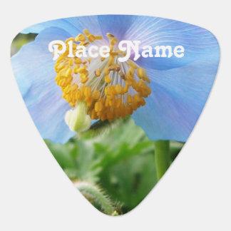 Pretty Blue Poppy Pick