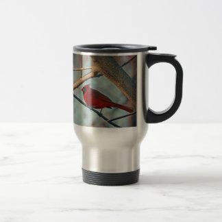 Pretty Boy Male Cardinal Travel Mug