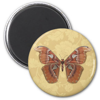 Pretty Brown Butterfly on Vintage Beige Floral 2 Inch Round Magnet