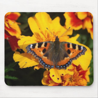 Pretty Butterfly Mousepad