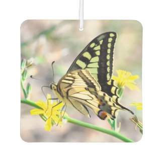 Pretty Butterfly on Yellow Flower Air Freshener