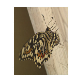 Pretty Butterfly, Wood Wall Art