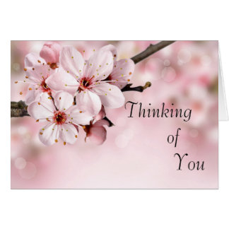 Pretty Cherry Blossoms Thinking of You Card