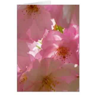 Pretty Cherry Flowers Card