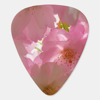 Pretty Cherry Flowers Guitar Pick