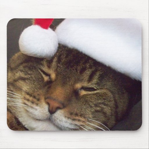 Pretty Christmas kitty mouse pad