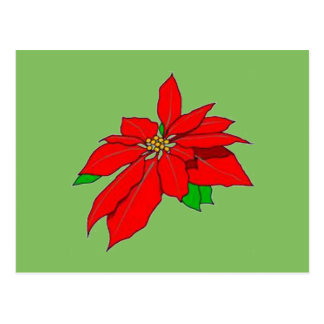 Pretty Christmas Pointsettia Poinsettia Postcard