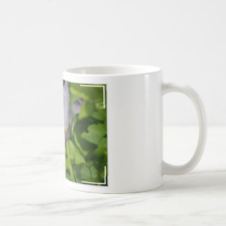 Pretty Clematis Mugs