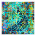 Pretty Colourful Bright Turquoise Peacock Abstract Poster