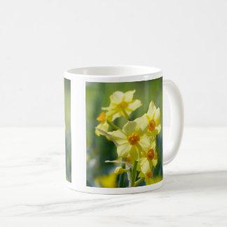 Pretty Daffodils, Narcissus 03.1.3 Coffee Mug