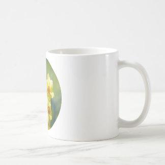 Pretty Daffodils, Narcissus 03.2_rd Coffee Mug