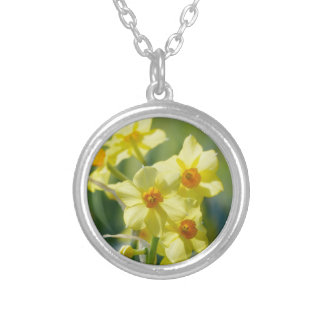 Pretty Daffodils, Narcissus 03.2_rd Silver Plated Necklace