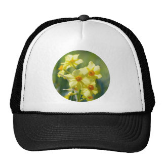 Pretty Daffodils, Narcissus 03.2_rd Trucker Hat