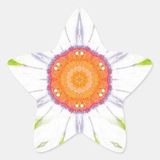 Pretty daisy design star sticker
