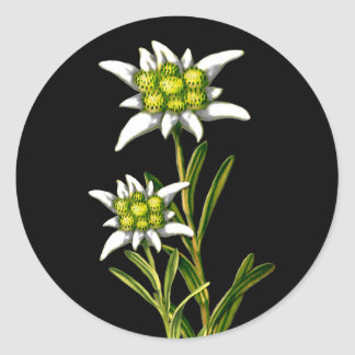 Pretty Edelweiss Stickers