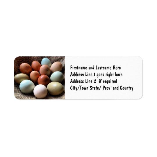 Pretty Eggs From Chicken Farm