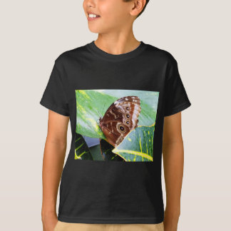 pretty eye butterfly moth brown tan picture bug T-Shirt