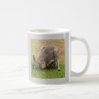 Pretty Faced Wallaby Coffee Mug
