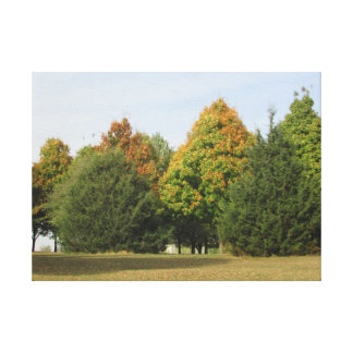 Pretty Fall Leaves Photograph from Wisconsin Art Canvas Print