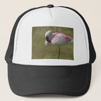 Pretty Flamingo Trucker Hat
